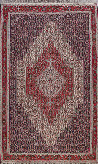 Geometric Senneh Persian Area Rug 7x10
