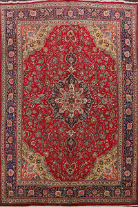 Tabriz Persian Area Rug 10x14