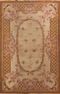Antique Agra Oriental Area Rug 6x9