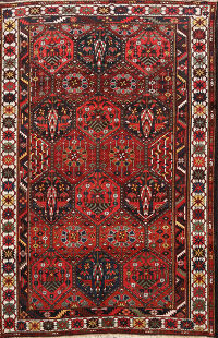 Antique Vegetable Dye Bakhtiari Persian Area Rug 7x10