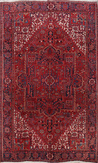 Geometric Heriz Persian Area Rug 9x12