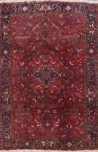 Geometric Heriz Persian Area Rug 9x11