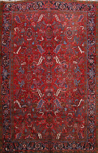 All-Over Heriz Persian Area Rug 8x10