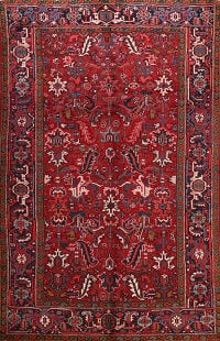 All-Over Heriz Persian Area Rug 7x10