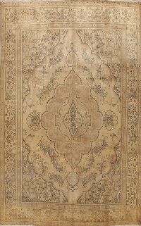 Tabriz Persian Area Rug 10x13