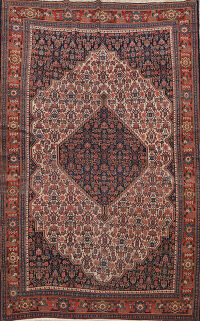 Pre-1900 Antique Senneh Vegetable Dye Persian Area Rug 5x7