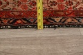 Pre-1900 Antique Malayer Vegetable Dye Persian Area Rug 5x7 image 17