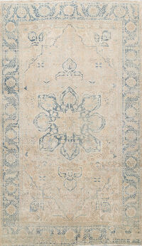 Antique Muted Distressed Heriz Persian Area Rug 8x11