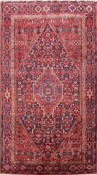 Tribal Hamedan Persian Area Rug 5x7