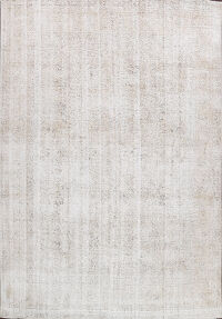 Antique Muted Vintage Distressed Oriental Area Rug 10x11