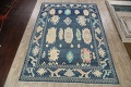 All-Over Oushak Oriental Area Rug 10x14 image 2