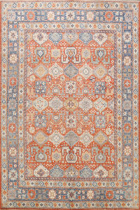 100% Vegetable Dye Khotan Oriental Area Rug 9x10