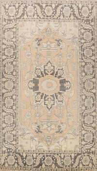 100% Vegetable Dye Khotan Oriental Area Rug 7x11