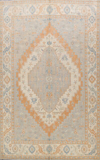100% Vegetable Dye Khotan Oriental Area Rug 8x11