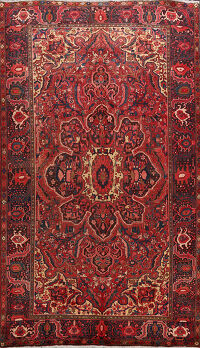 Floral Red Heriz Persian Area Rug 8x11
