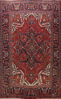 Floral Red Heriz Persian Area Rug 10x12