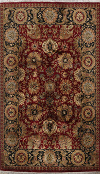 Floral Agra Oriental Area Rug 6x9