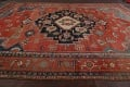 Pre-1900 Antique Heriz Serapi Vegetable Dye Persian Rug 12x16 image 21