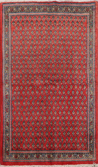 All-Over Boteh Botemir Persian Area Rug 4x5