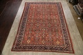 Pre-1900 Antique Vegetable Dye Sultanabad Persian Area Rug 10x14 image 2