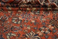 Pre-1900 Antique Vegetable Dye Sultanabad Persian Area Rug 10x14 image 18