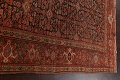 Pre-1900 Antique Vegetable Dye Malayer Persian Area Rug 5x10 image 12