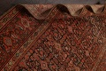 Pre-1900 Antique Vegetable Dye Malayer Persian Area Rug 5x10 image 16