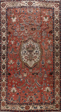 Antique Vegetable Dye Bakhtiari Persian Area Rug 11x16
