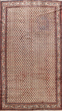 All-Over Boteh Botemir Persian Area Rug 7x11