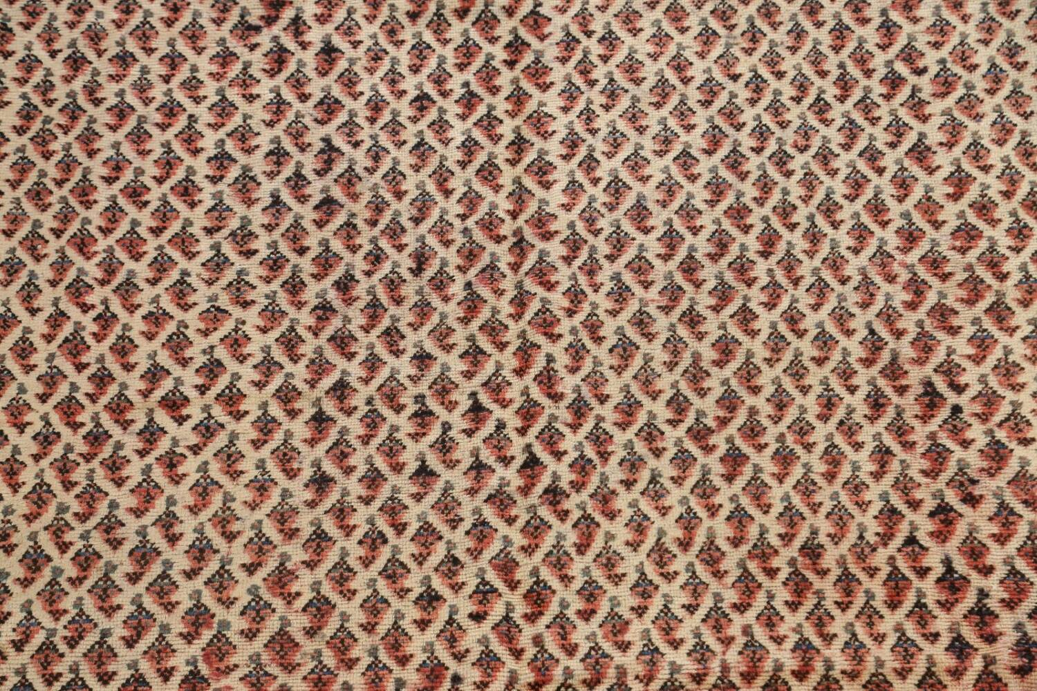 All-Over Boteh Botemir Persian Area Rug 7x11 image 4