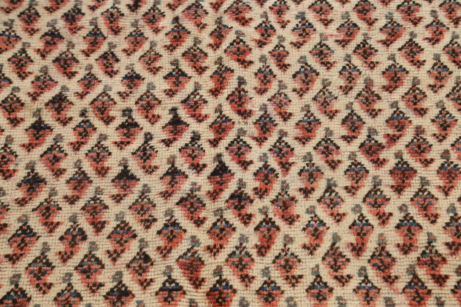 All-Over Boteh Botemir Persian Area Rug 7x11 image 10