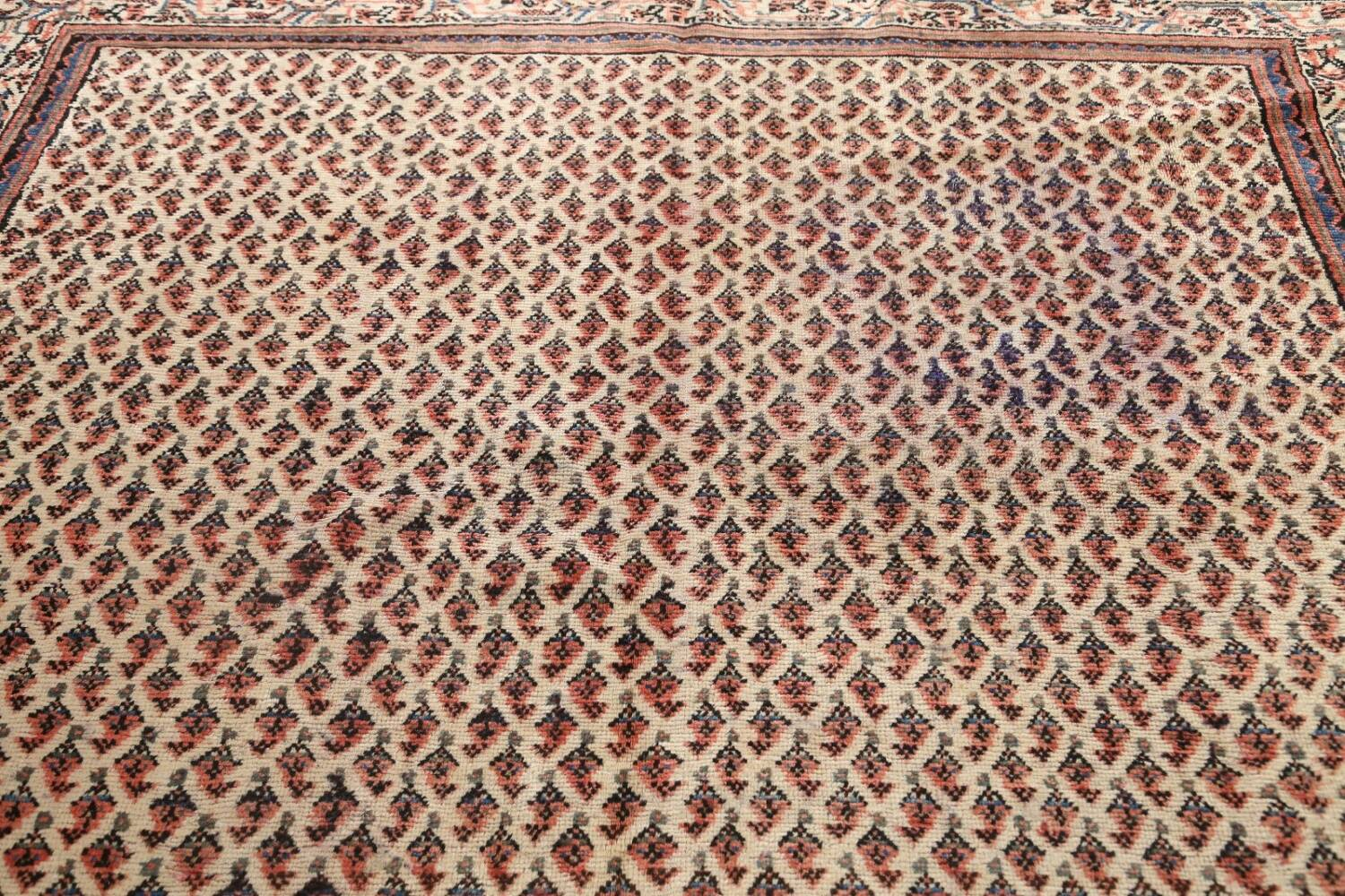All-Over Boteh Botemir Persian Area Rug 7x11 image 11