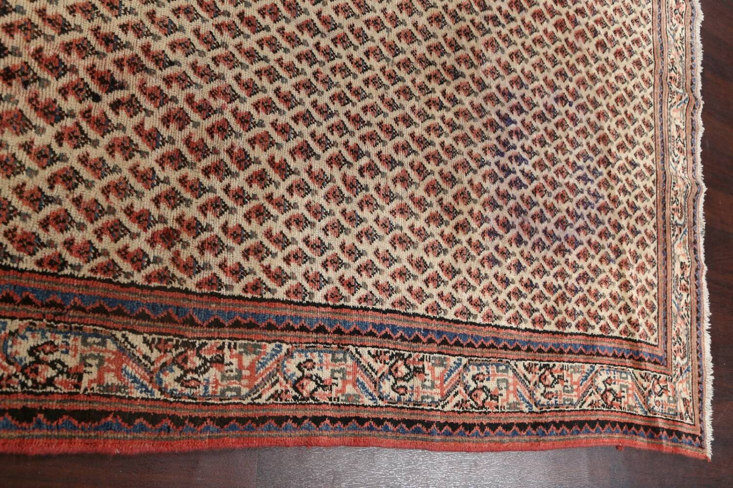 All-Over Boteh Botemir Persian Area Rug 7x11 image 16