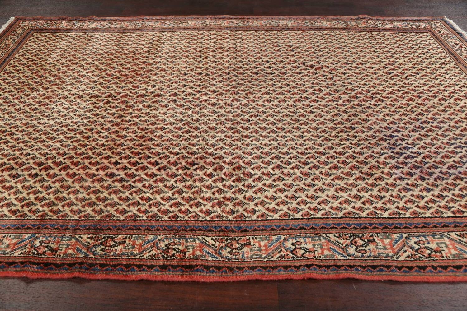 All-Over Boteh Botemir Persian Area Rug 7x11 image 17