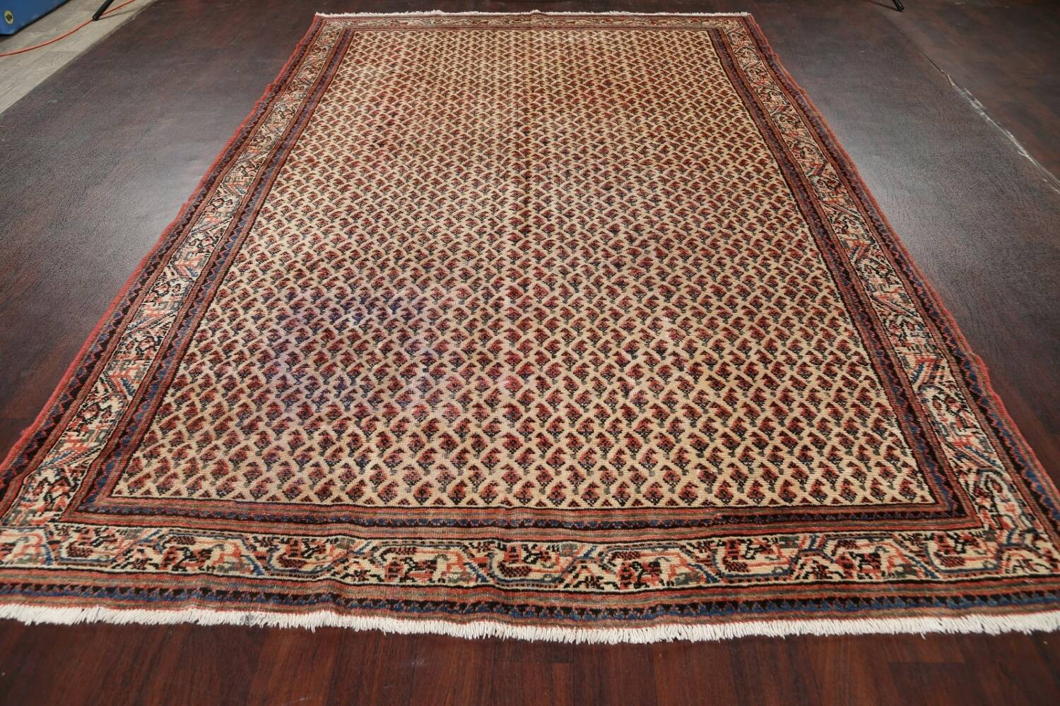 All-Over Boteh Botemir Persian Area Rug 7x11 image 18