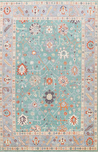 All-Over Oushak Oriental Area Rug 9x12