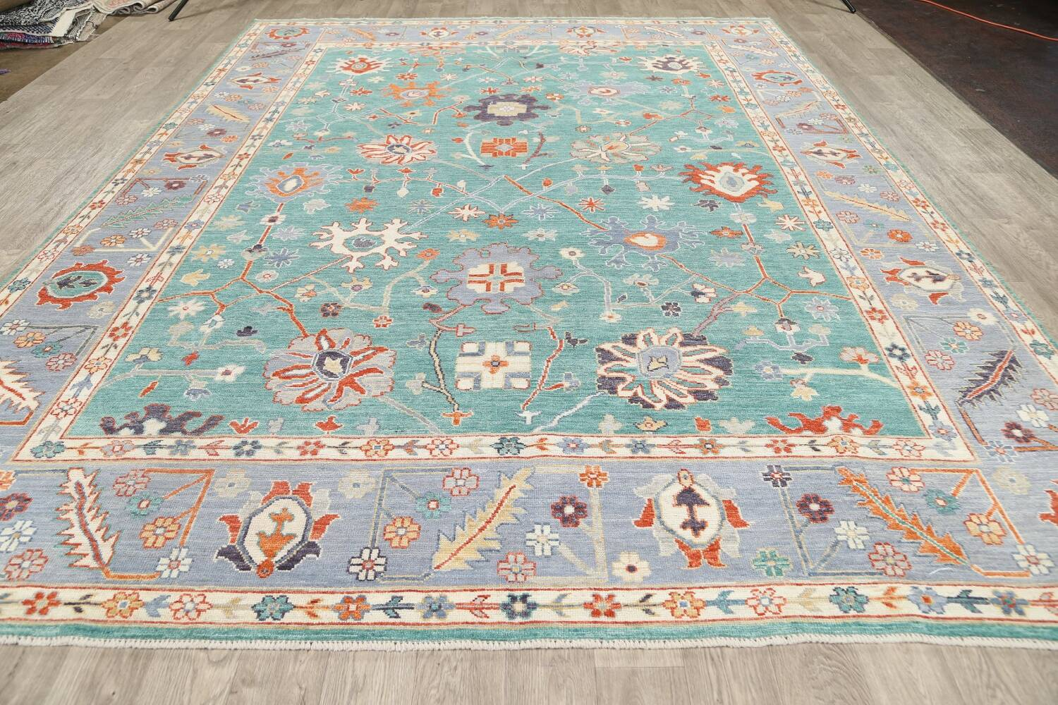 All-Over Oushak Oriental Area Rug 9x12 image 15