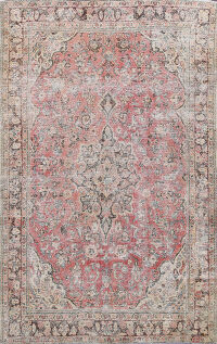 Antique Muted Mashad Persian Area Rug 7x10