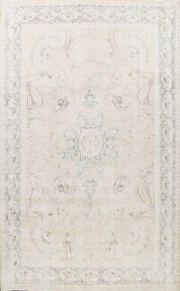 Muted Distressed Kashmar Persian Area Rug 9x12