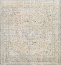 Muted Distressed Kashan Persian Area Rug 9x9 Square