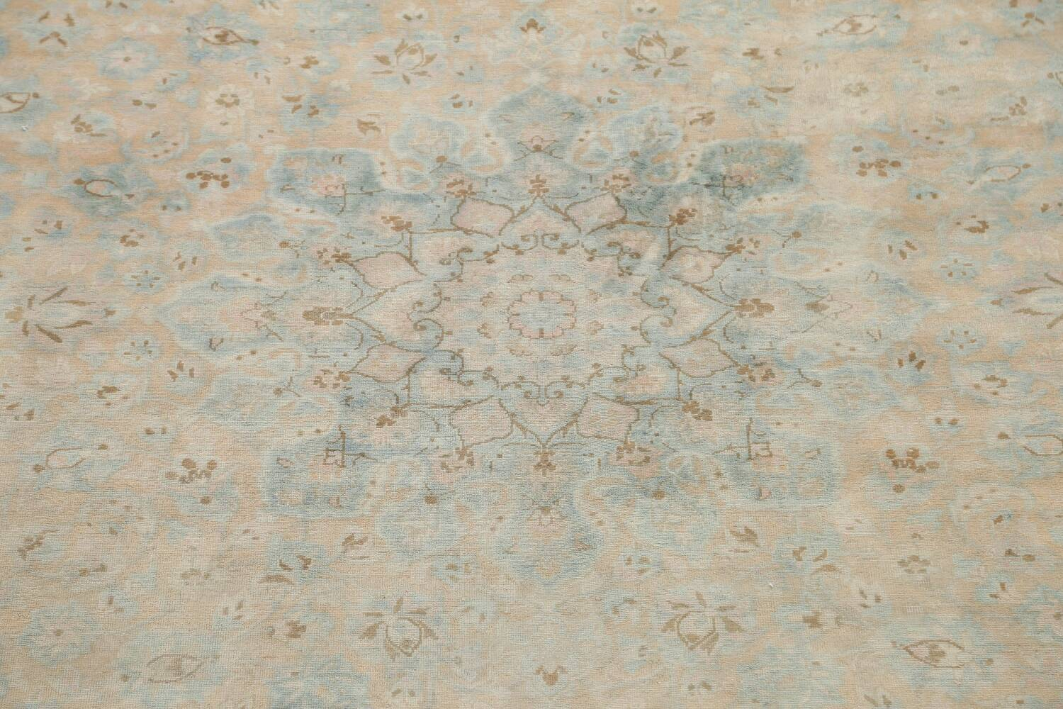Muted Distressed Kashan Persian Area Rug 10x13 image 4