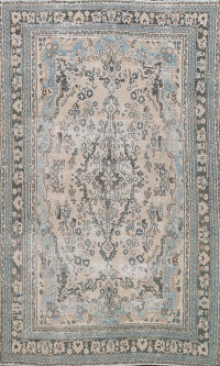 Muted Distressed Hamedan Persian Area Rug 7x10