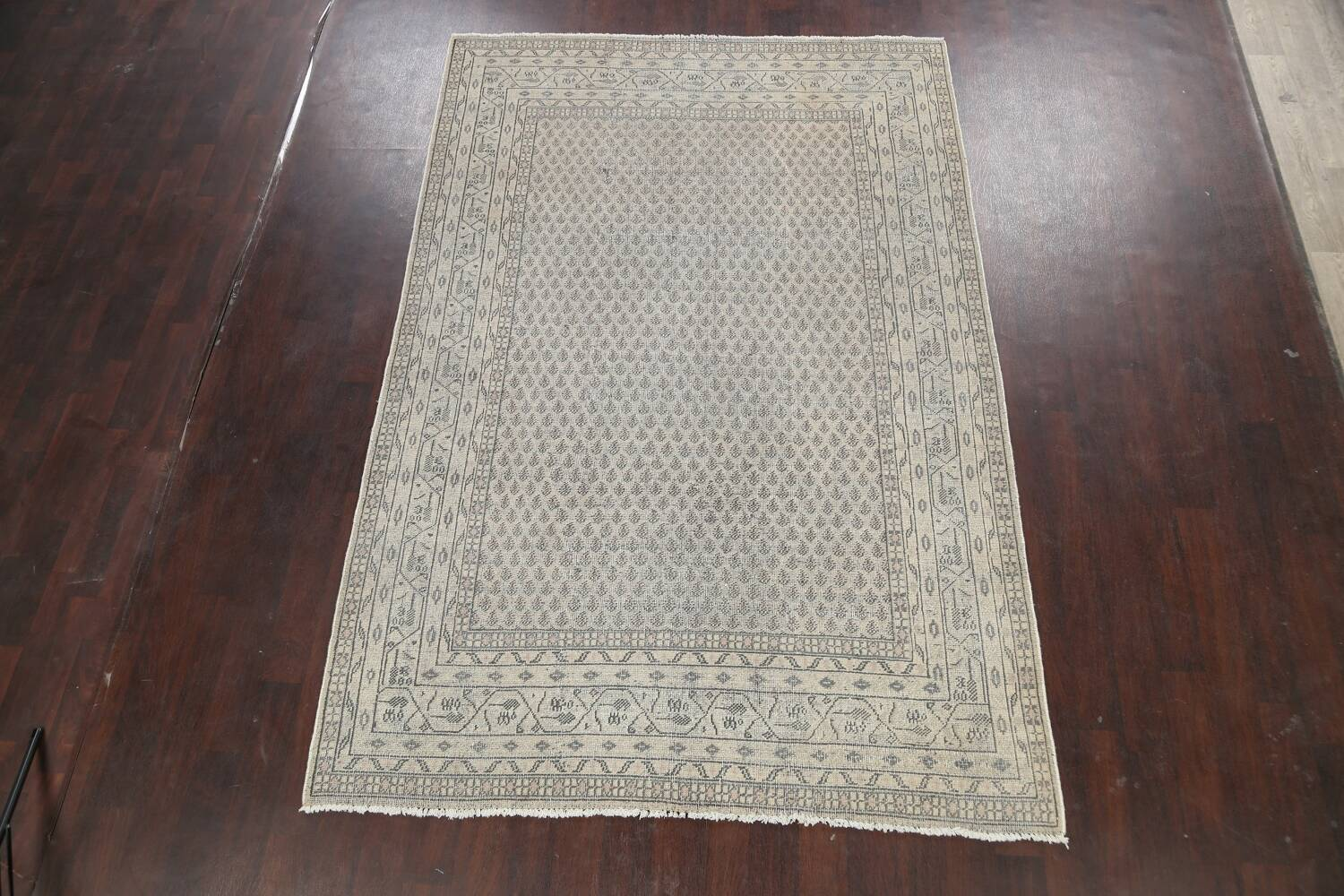 Muted Distressed Botemir Persian Area Rug 7x10 image 2