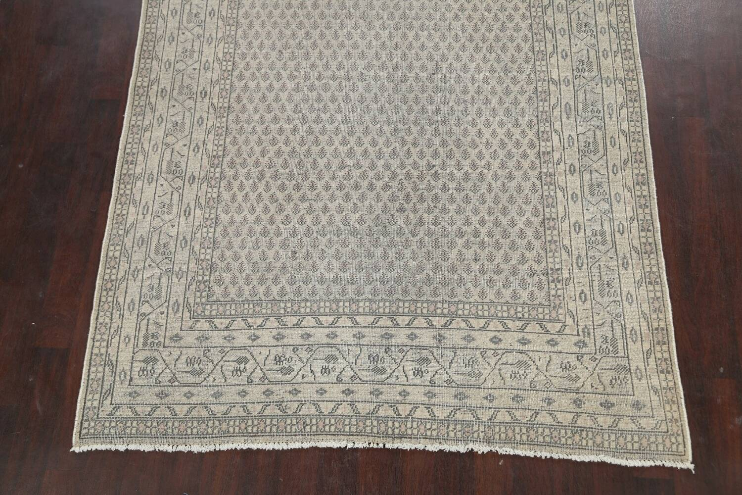 Muted Distressed Botemir Persian Area Rug 7x10 image 8