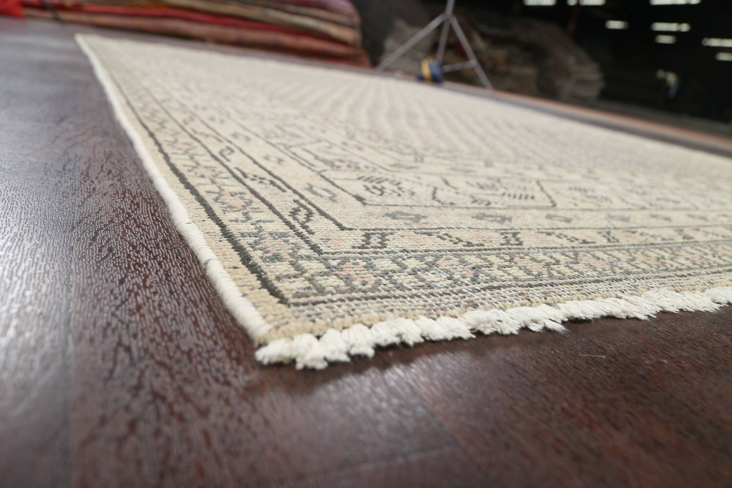 Muted Distressed Botemir Persian Area Rug 7x10 image 6