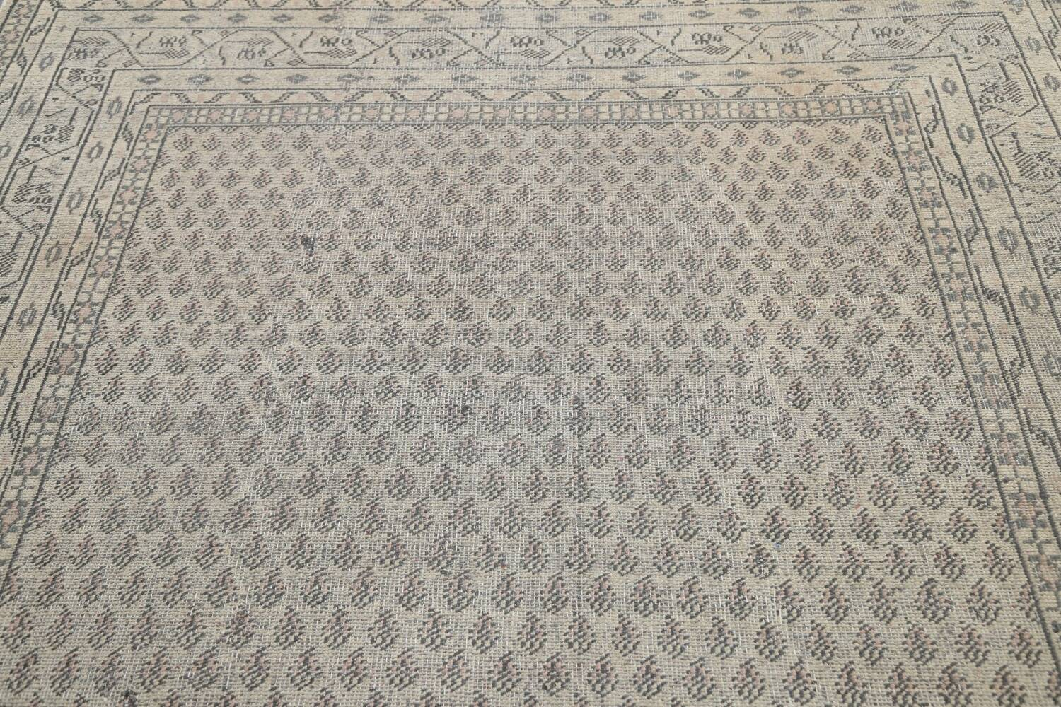 Muted Distressed Botemir Persian Area Rug 7x10 image 11
