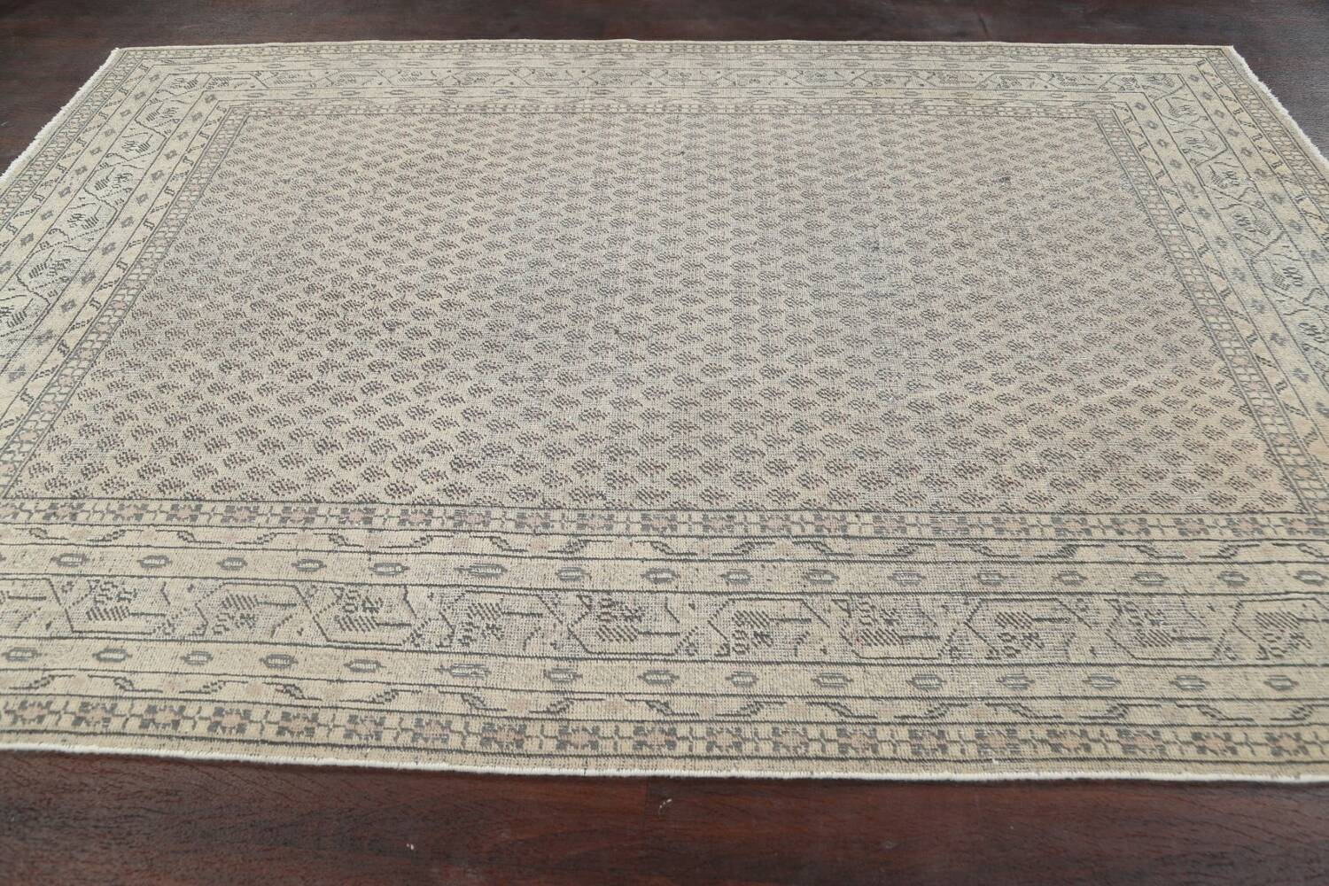 Muted Distressed Botemir Persian Area Rug 7x10 image 13