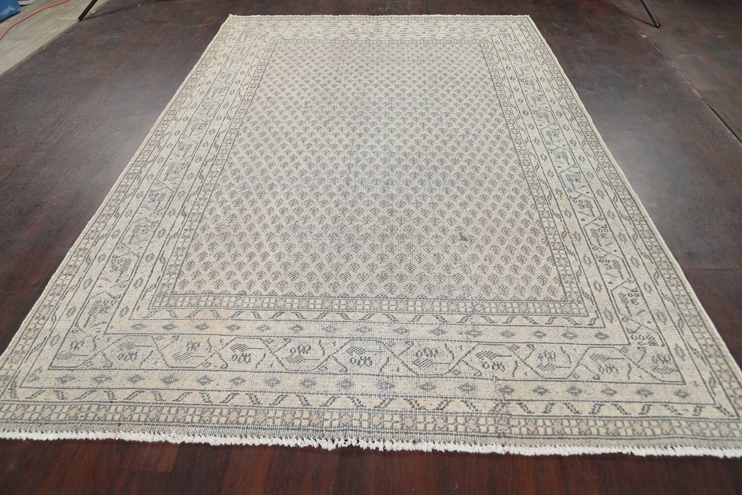 Muted Distressed Botemir Persian Area Rug 7x10 image 14
