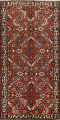 All-Over Floral Bakhtiari Persian Area Rug 5x10 image 1