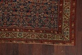 Pre-1900 Antique All-Over Malayer Persian Area Rug 4x6 image 5